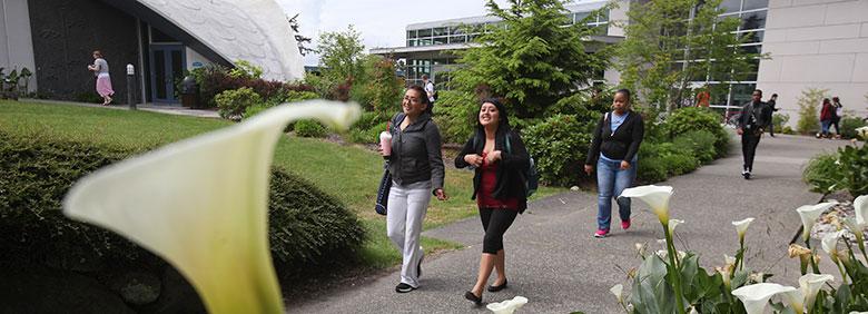 Academic Suspension Appeals Highline College Student